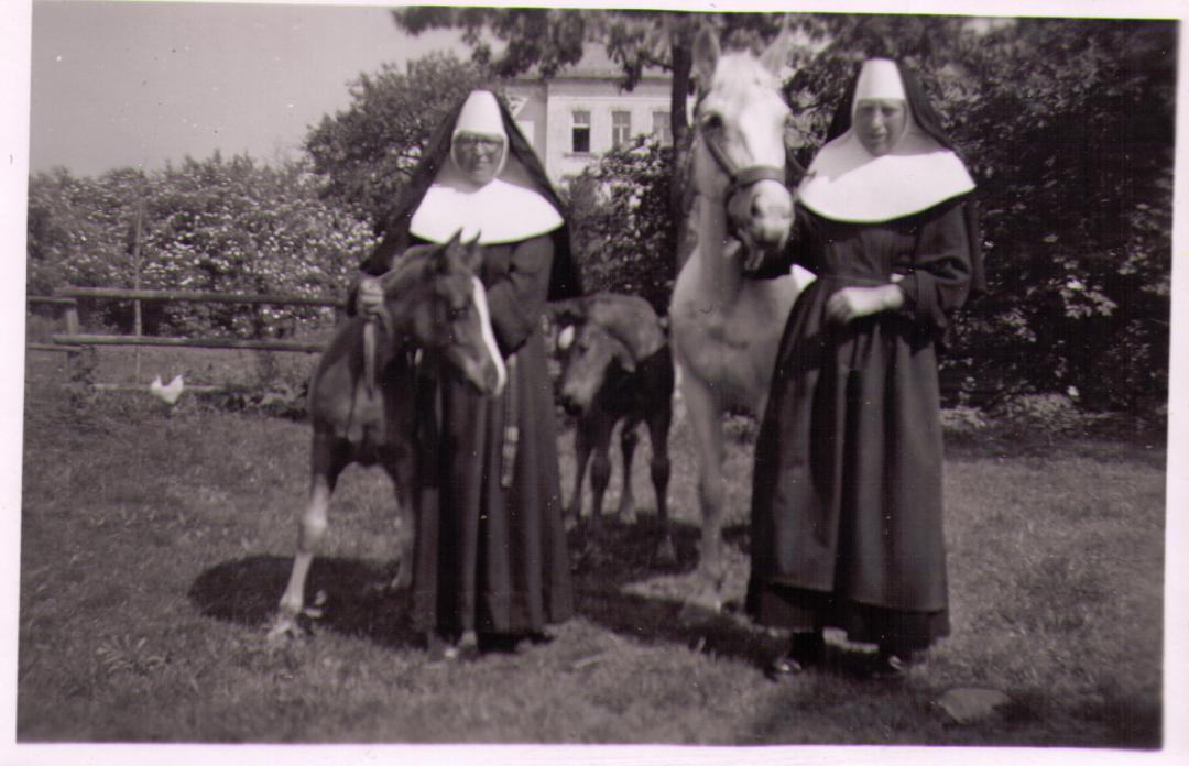 sSalvBenv 1952